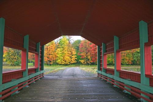D-207-32 - Covered Bridge, with Autumn Colors. Caseville, MI.
