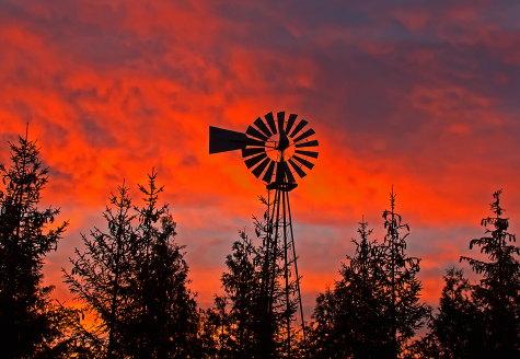 D-11-257 - Old Fashioned Windmill at Sunrise. Pigeon, MI.
